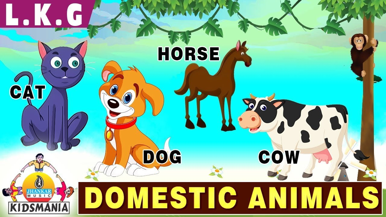 animals domestic lkg teach educational