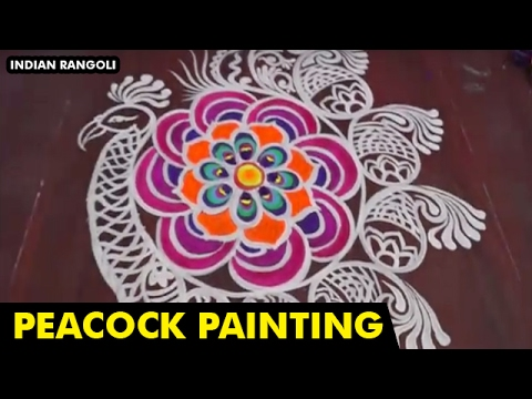 Beautiful Peacock Painting Colourful Rangoli Designs On Floor