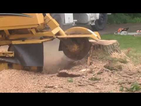AWESOME!!!! $ 80,000 REMOTE CONTROL STUMP GRINDER