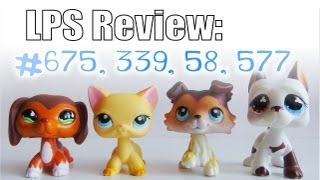 Lps Review: Collie #58, Cat #339, Dachshund #675, Great Dane #577