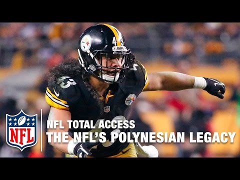 Troy Polamalu & The NFL