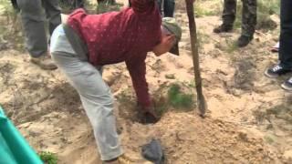 ホルチン砂漠緑化記2010