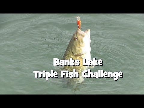 Banks Lake Triple Fish Challenge