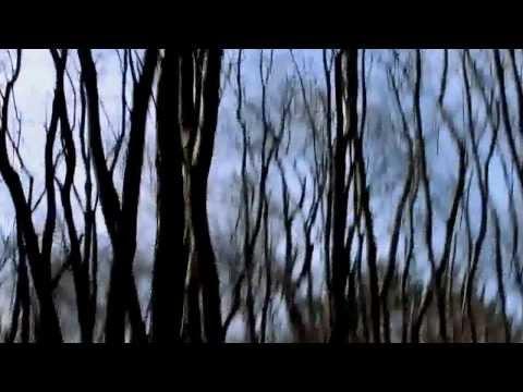 Dreams - A Short Film By Ilay Ron