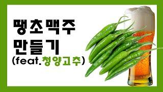 [홈브루잉]땡초맥주 만들기(feat.청양고주)