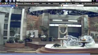 Kitty Watch 2009: Ellen Degeneres Cam Kitty!
