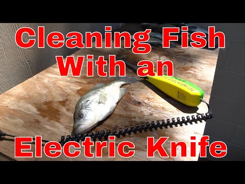How to Clean Crappie (and most fish) with an Electric Fillet Knife