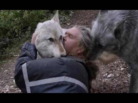ele-é-o-verdadeiro-homem-lobo.-vive-com-os-lobos-e-como-um-lobo