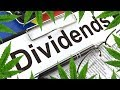 8 Pot Stocks That Pay Dividends in 2019/2020 - Stock News 2019 - Dividend Paying MJ Companies