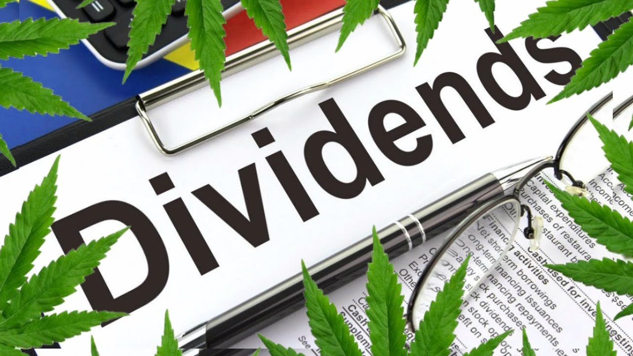 Best Monthly Dividend Stocks 2020 8 Pot Stocks That Pay Dividends in 2019/2020   Stock News 2019