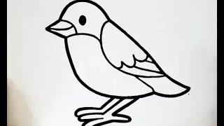 رسم عصفور بأسهل طريقة للمبتدئين How To Draw A Bird For Beginner Youtube