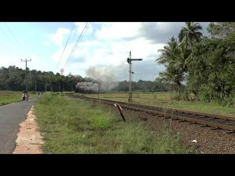 Sri Lanka 2015 Viceroy Special at Talawattegedara