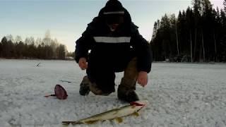 Ловлю щуку на не известном озере попытка вторая