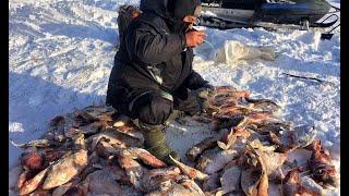 ТАКОЙ ЖОР И ПО ПЕРВОМУ ЛЬДУ РЕДКОСТЬ Рыбалка мечты на Оби Комбайны безмотылка балансир