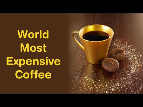 TOP 5 MOST EXPENSIVE COFFEE IN THE WORLD 2020
