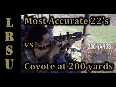 Most Accurate 22 LR's At 200 Yards Sitting Unsupported - 22 LR Marksmen Challenge