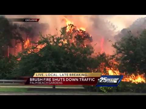 Crews battle large brush fire in palm beach gardens youtube for Fire in palm beach gardens today