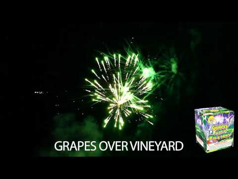Grapes Over Vineyard