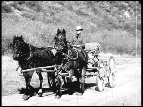The Pecos Kid (1935) FRED KOHLER, JR