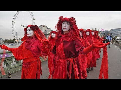 Is Extinction Rebellion Harming Their Climate Change Cause?
