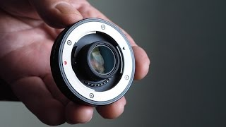 A Review Of The Olympus MC-14 1.4x Teleconverter for the 40-150mm f/2/8 Pro Zoom