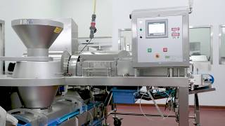 FAM │ Deville Sanitary Industrial Cheese Shredding Line