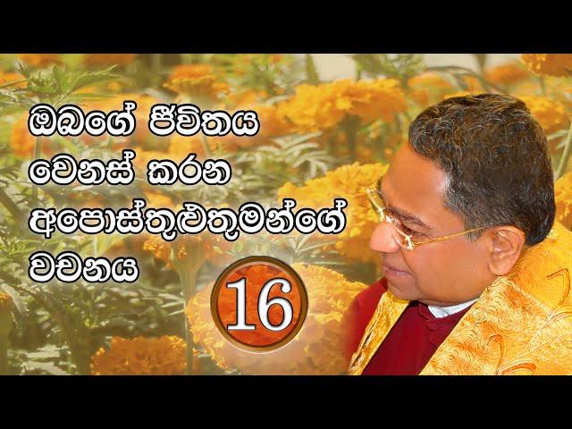 ඔබගේ ජීවිතය වෙනස් කරන අපොස්තුළුතුමන්ගේ වචනය #16 | His Holiness Apostle Rohan Lalith Aponso