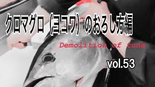 クロマグロ(ヨコワ)のおろし方編 vol.53
