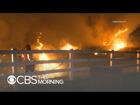 Maria Fire Erupts In Southern California