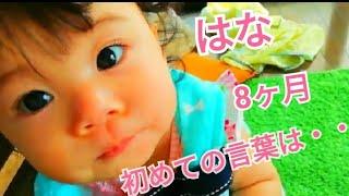 【はな✾8ヶ月】初めての言葉は…(*^^*)