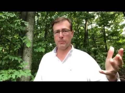 Degradable vs Biodegradable vs Compostable