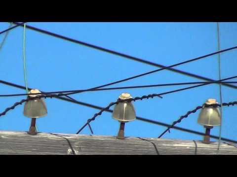 Old Railroad Insulators on Telegraph Poles