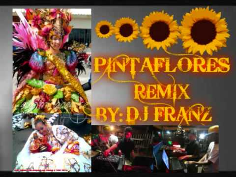 Pintaflores remix dj franz ondamix non stop