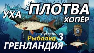 Плотва Хопёр /Уха / РР3 [Русская Рыбалка 3 Гренландия]