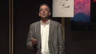 TEDxRainier - Dimitri Christakis - Media and Children