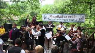 Muzsikál az Erdő 2013 - első nap, Mátraalmás
