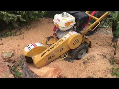 Rayco stump grinding