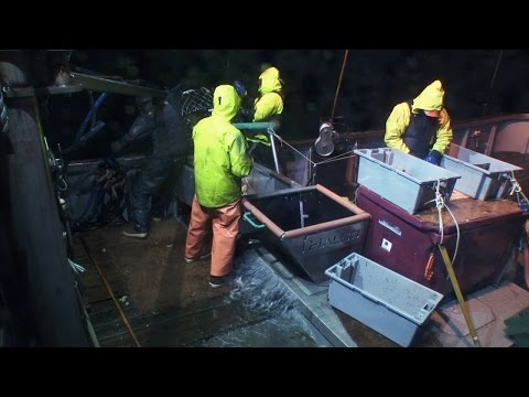Injury At Sea | Deadliest Catch: Dungeon Cove