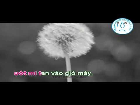 Karaoke Bồ công anh trong gió - Nam Du - Nguoicodonvn2008.info ( Dual)