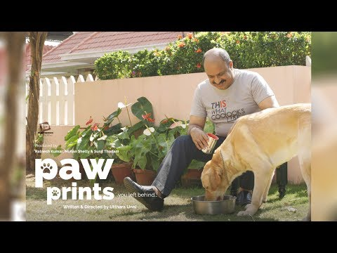 Paw Prints - Official Full Short Film | Utthara Unni Malayalam Short Film 2017 (English Subtitles)