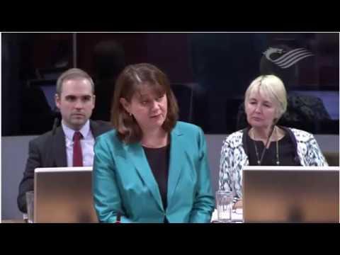 Araith Mesur Cymru Leanne Wood Wales Bill Speech