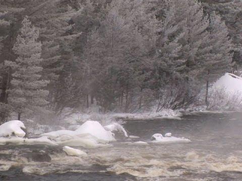Nature: Penobscot River