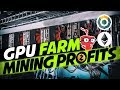 30 Days of Crypto GPU Mining Profits