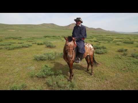 Duke Global Health Master's Students Investigate Zoonotic Diseases in Mongolia