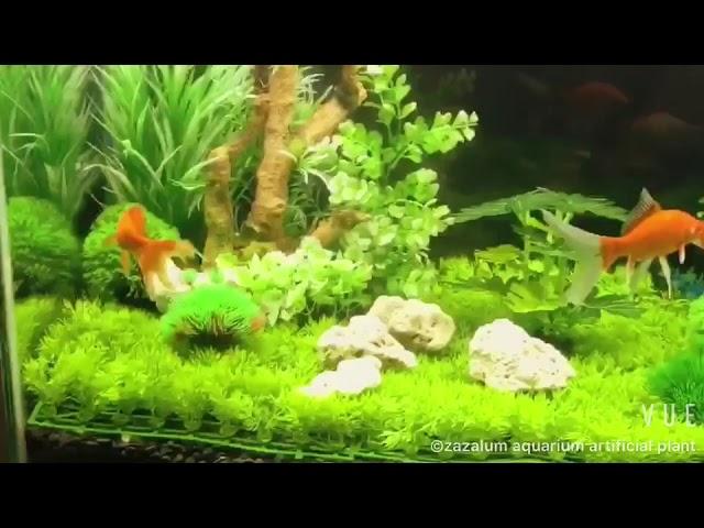 Aquascaping With Zazalum Aquarium Artificial Plant