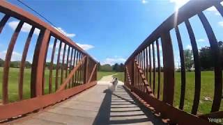 Tod's Walk   Papillon Filmed on a GoPro with SuperView and HyperSmooth