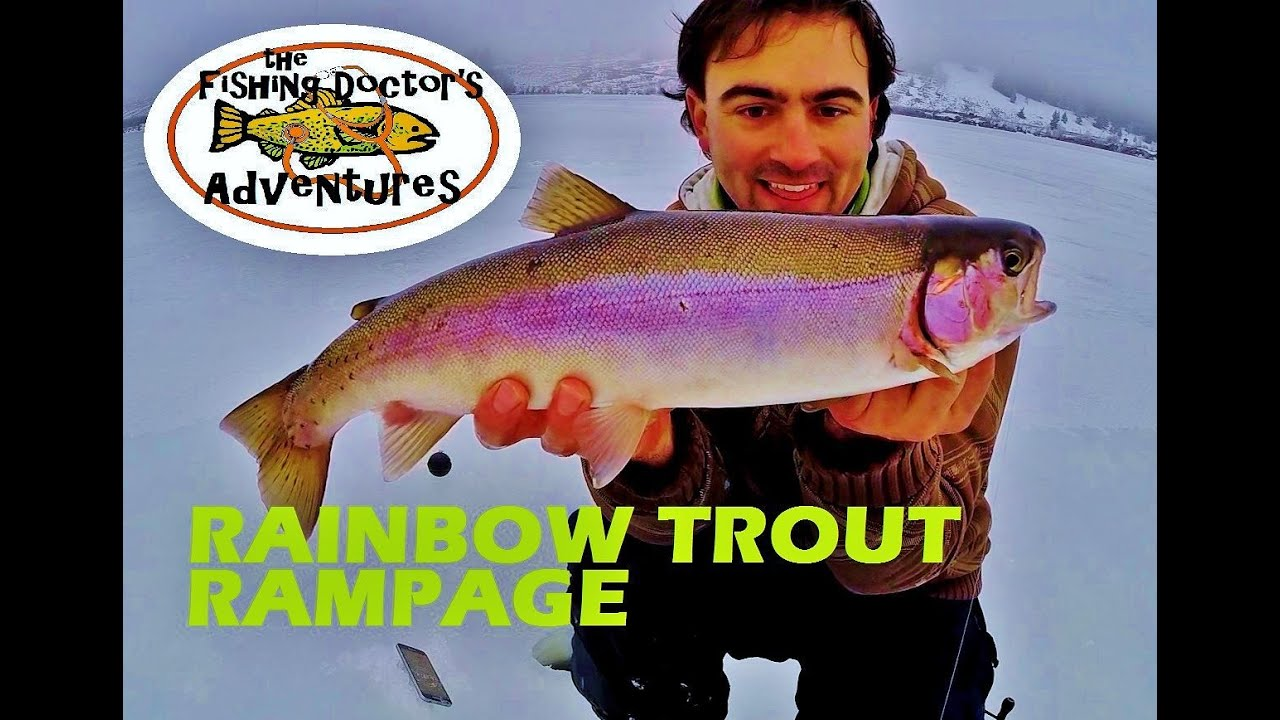 How to ice fishing rainbow trout location youtube for How to fish for rainbow trout