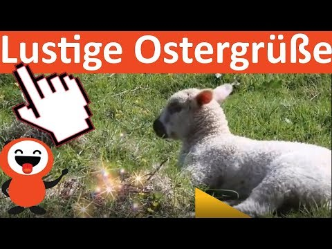 OSTERGRÜßE LUSTIG WHATS APP   OSTERN 2018   LUSTIGE VIDEOS