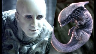 Why did the ENGINEERS create the XENOMORPHS?