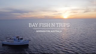 Google AdWords Case Study - Bay Fish N Trips thumbnail
